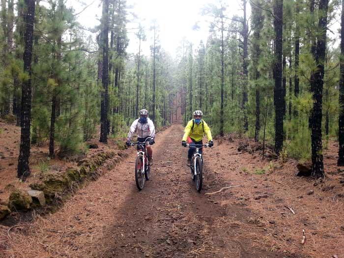 (Español) Ruta para disfrutar en mountain bike en el entorno del Volcán Chinyero, con excelentes vistas del Teide.